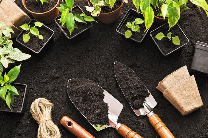Co dělat na zahradě v březnu