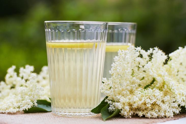 6 báječných receptů na bezinkové limonády a sirup