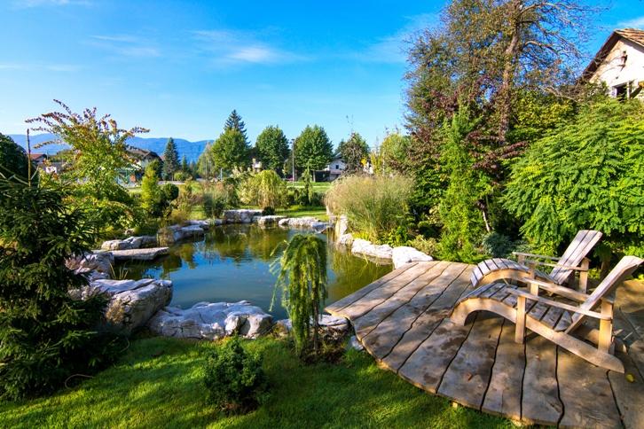 Zahradní jezírka a koupací jezírka – část 2, praktické rady