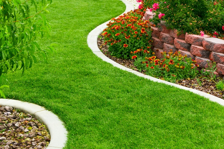Jak na založení trávníku