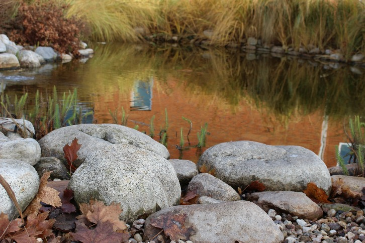 Zahradní jezírka a koupací jezírka – část 3.