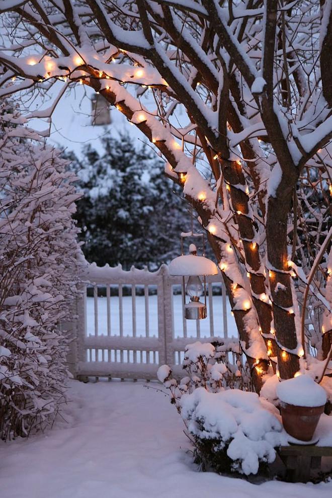 Zasněžené větve se světýlky